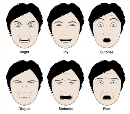 faceial ecpression, face expression